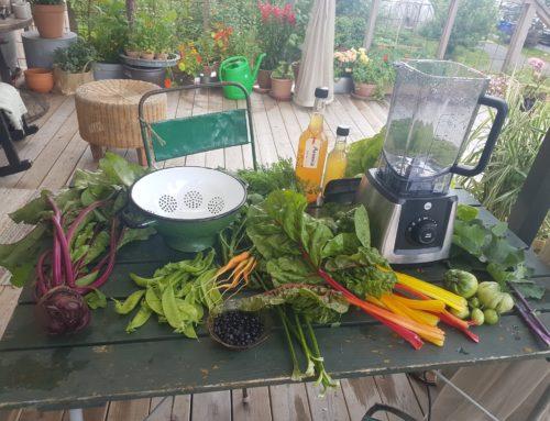 Nå bugner hagen av grønnsaker, det er bare å 'smoothe' i vei!